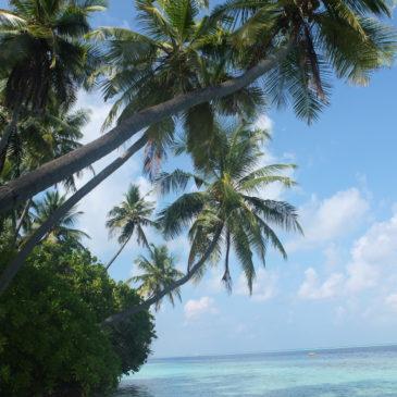 Шри-Ланка+Мальдивы
